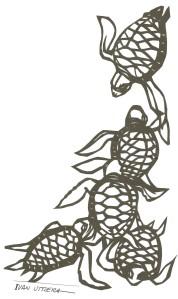 tortugas paper cut